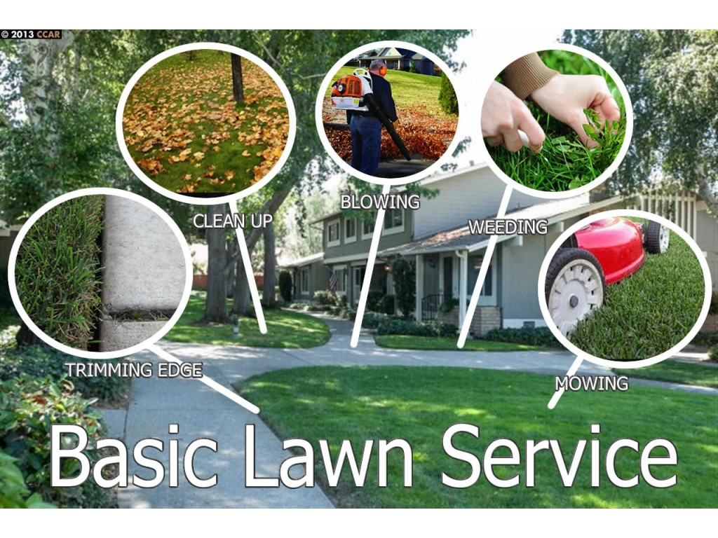 Sunrise lawn care service inc in lehigh acres fl 33974 for Gardening services