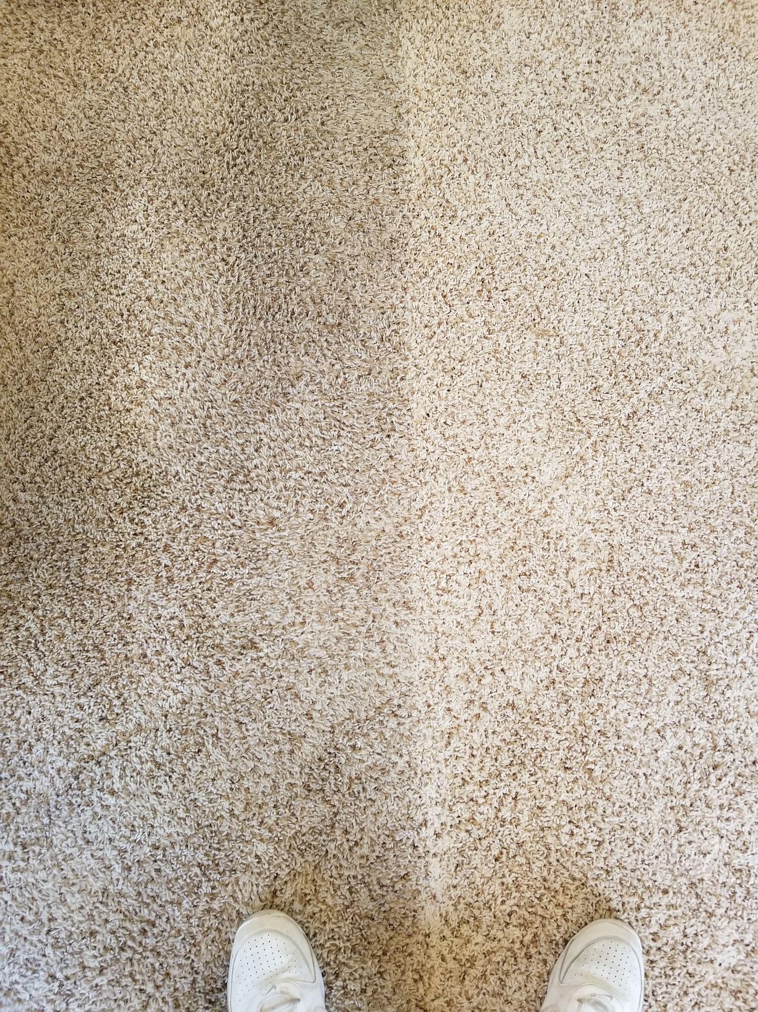 Royal Carpet Care Las Vegas Nevada Nv Localdatabase Com