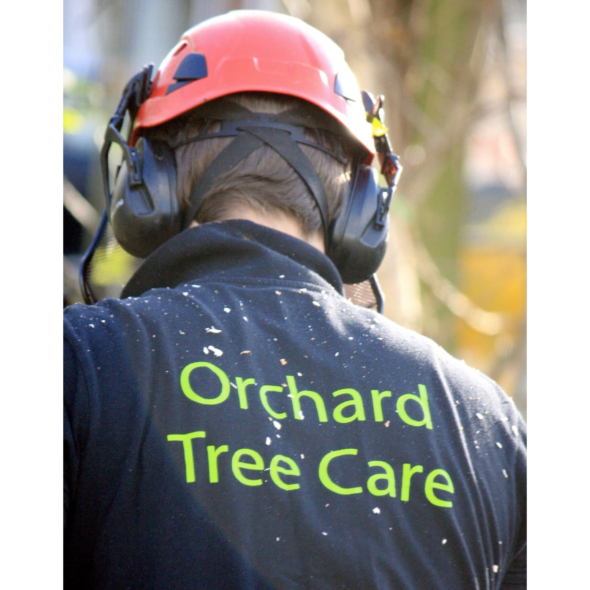 Orchard Tree Care - Nottingham, Nottinghamshire NG16 5BE - 01773 715649 | ShowMeLocal.com