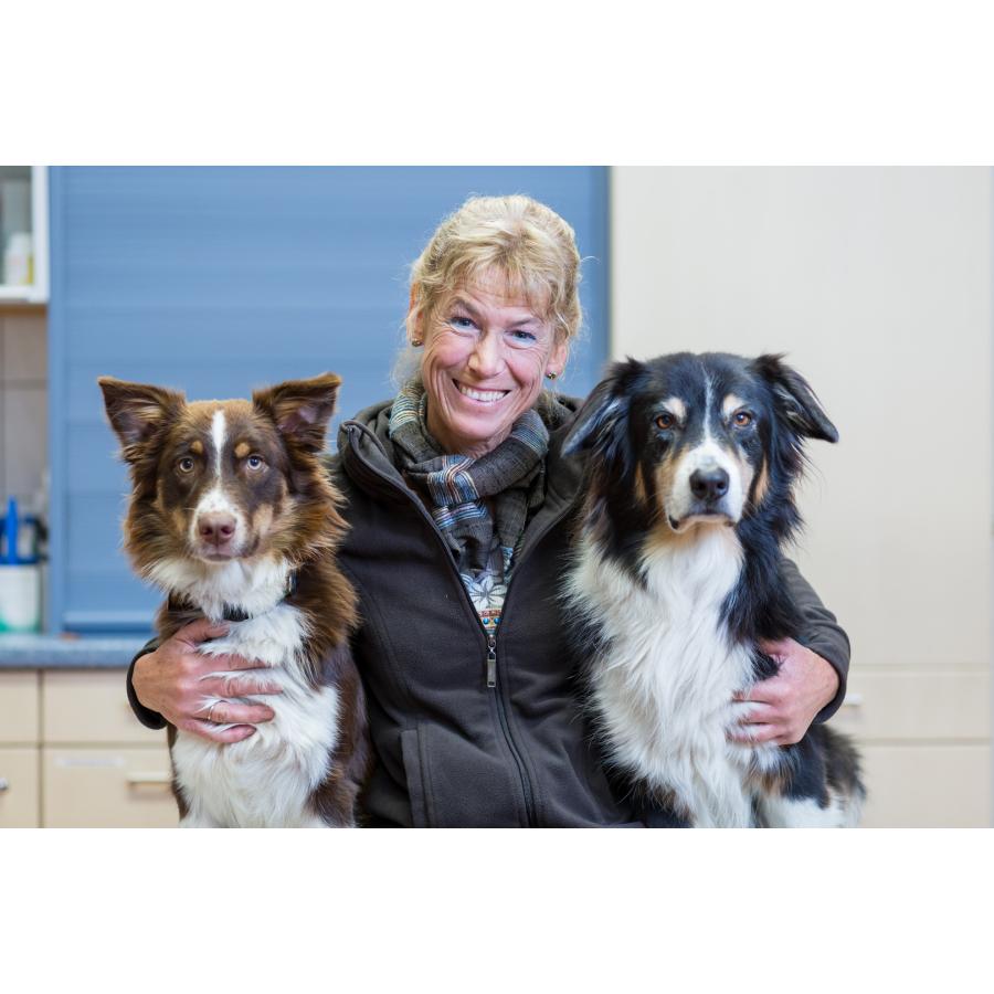 Bild zu Tierarzt Borsuck Hagen, Tierarztpraxis am Paulshof in Hagen in Westfalen