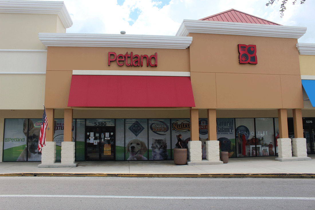 petland sarasota coupons sarasota fl near me 8coupons