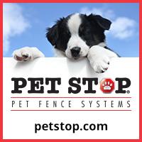 Dog Training Schools In Cincinnati Oh