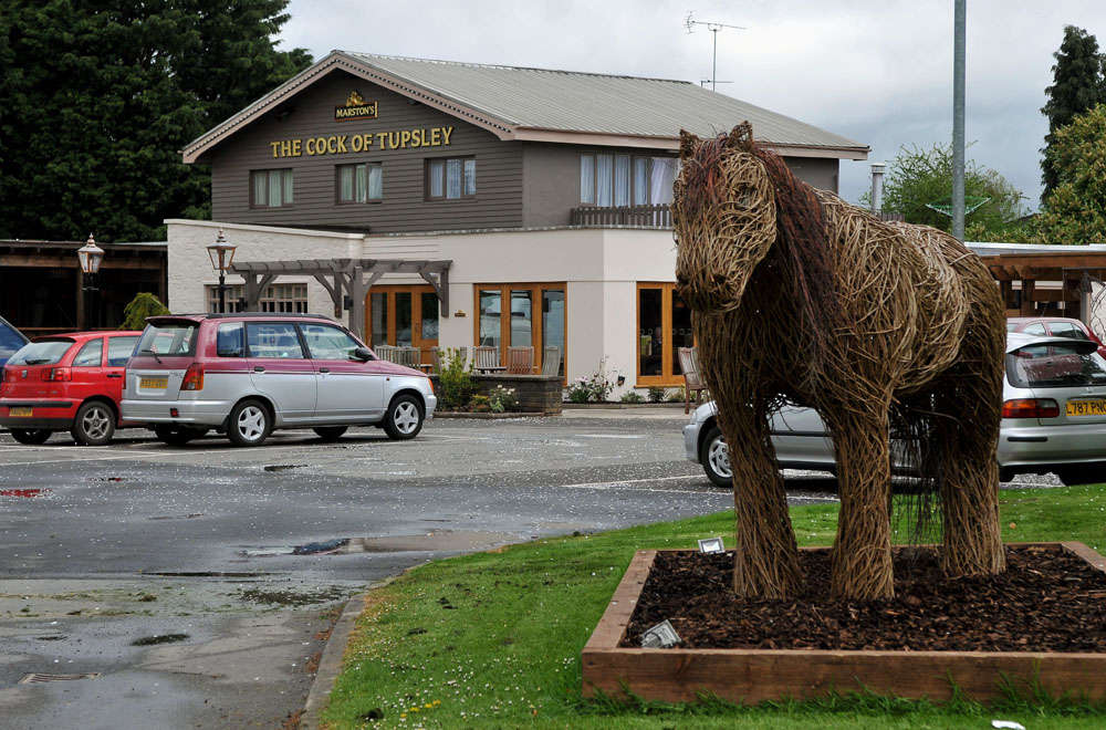 Cock Tupsley - Hereford, Herefordshire HR1 1UT - 01432 274911 | ShowMeLocal.com
