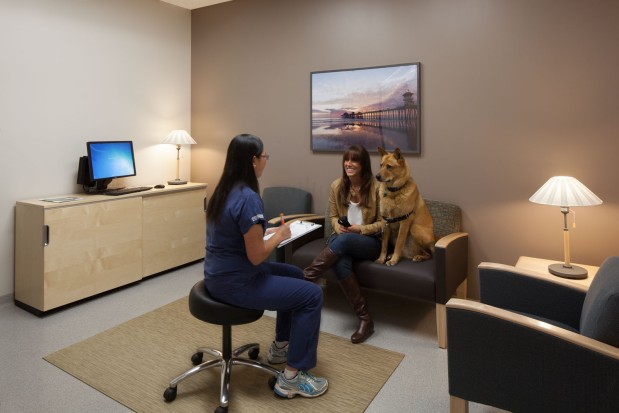 Huntington Beach Hospital Emergency Room
