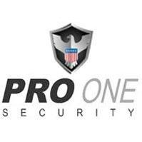 Pro One Security PLLC