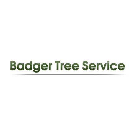 Badger Tree Service Inc