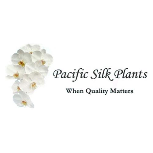 Pacific Silk Plants