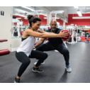 Z-Form Fitness - Miami, FL 33133 - (305)858-5886 | ShowMeLocal.com