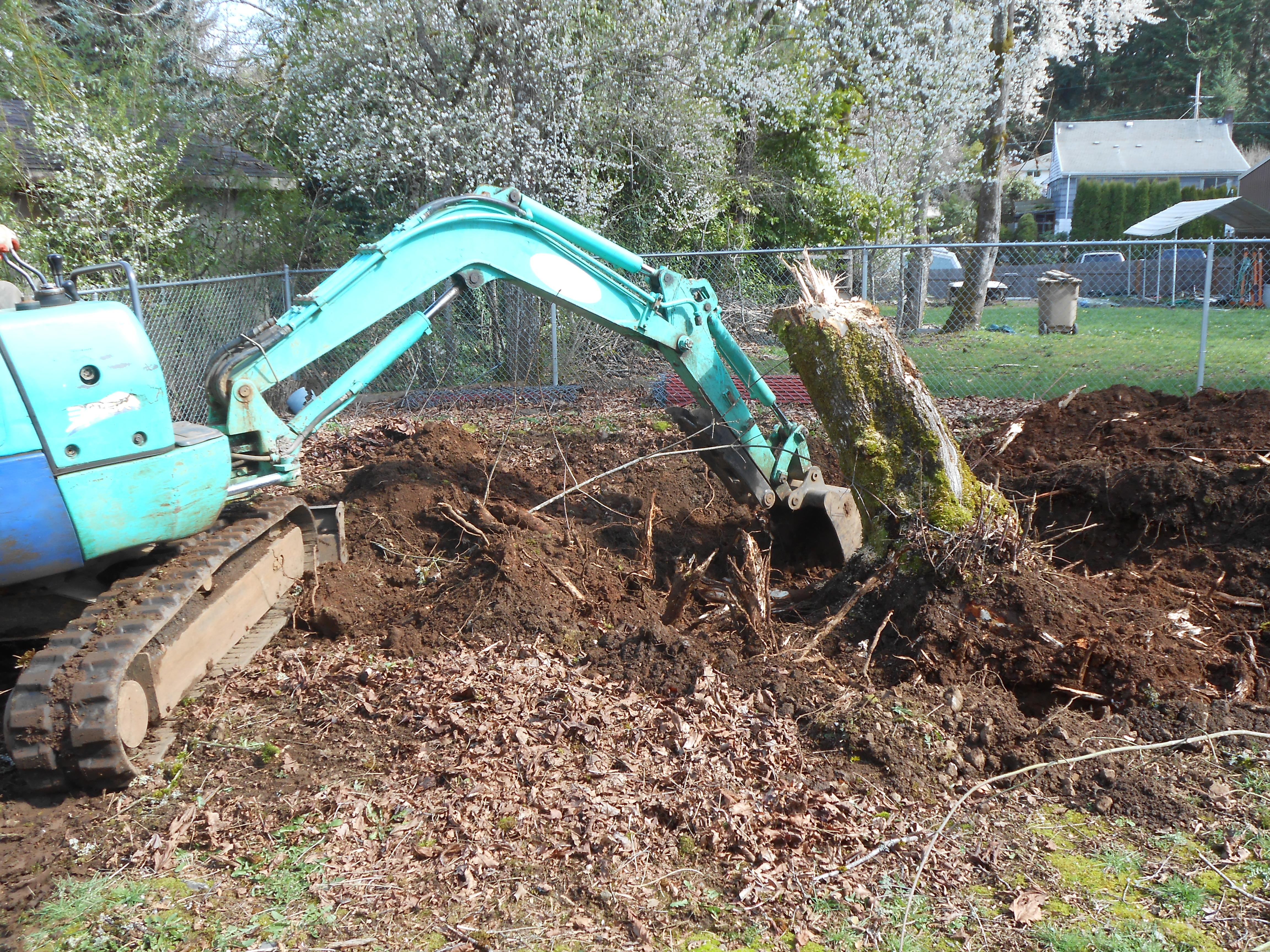 Will and Sons Excavation Llc