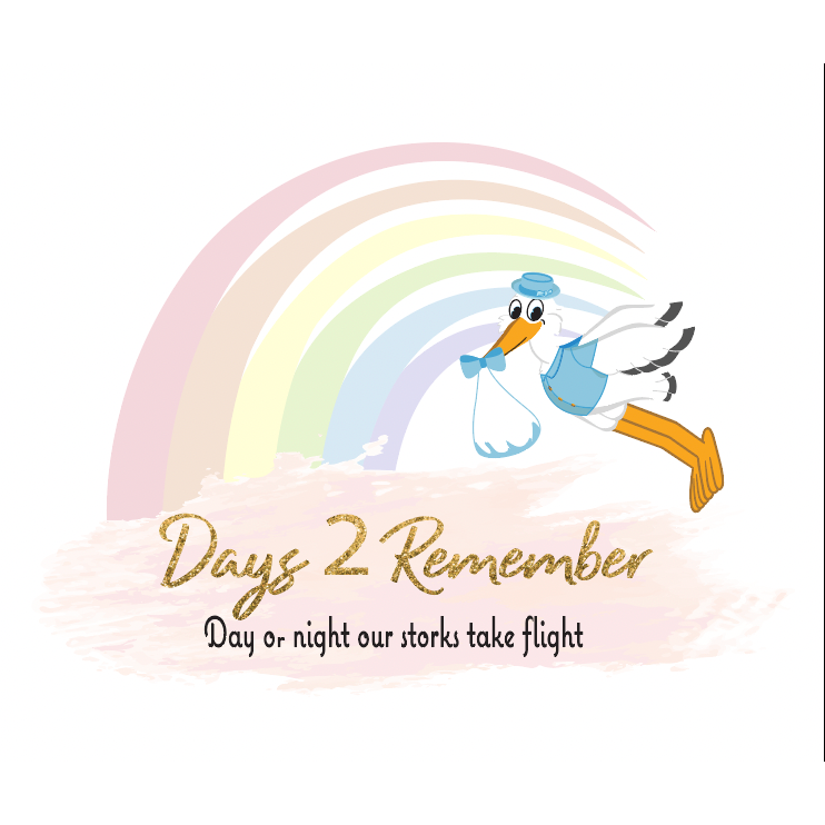 Days 2 Remember Pro