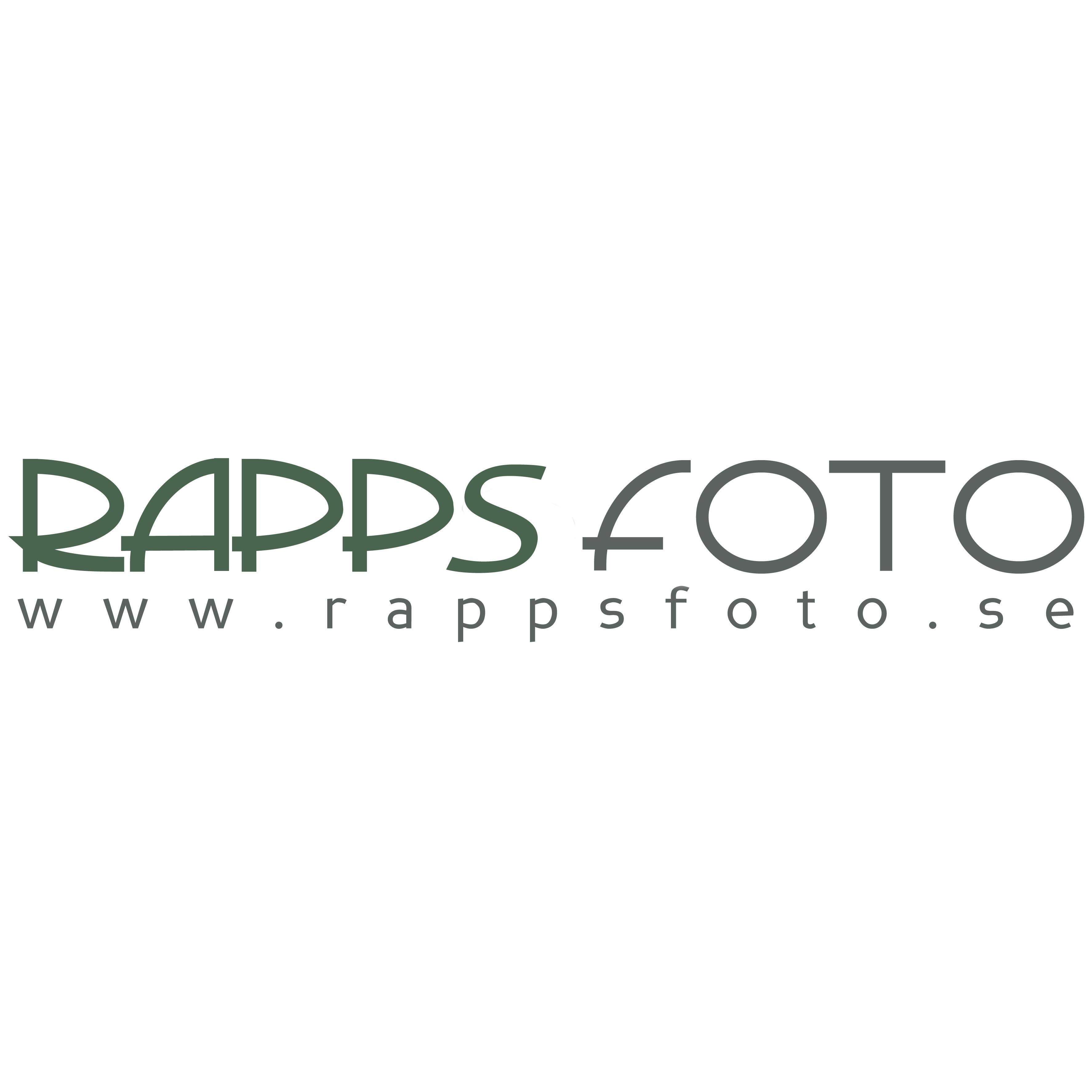 Rapps Foto