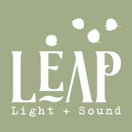 Leap Light and Sound - Richmond, VA - Audio & Video Services