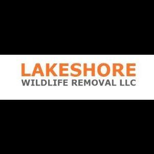 Lakeshore Wildlife Removal LLC