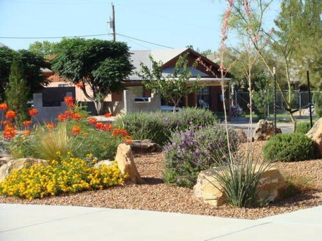 Delta Pest Control Amp Lawn Service El Paso Texas Tx