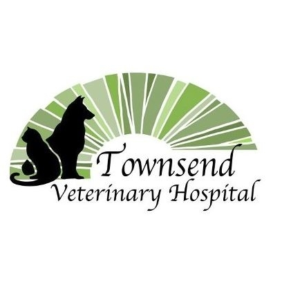 Townsend Veterinary Hospital