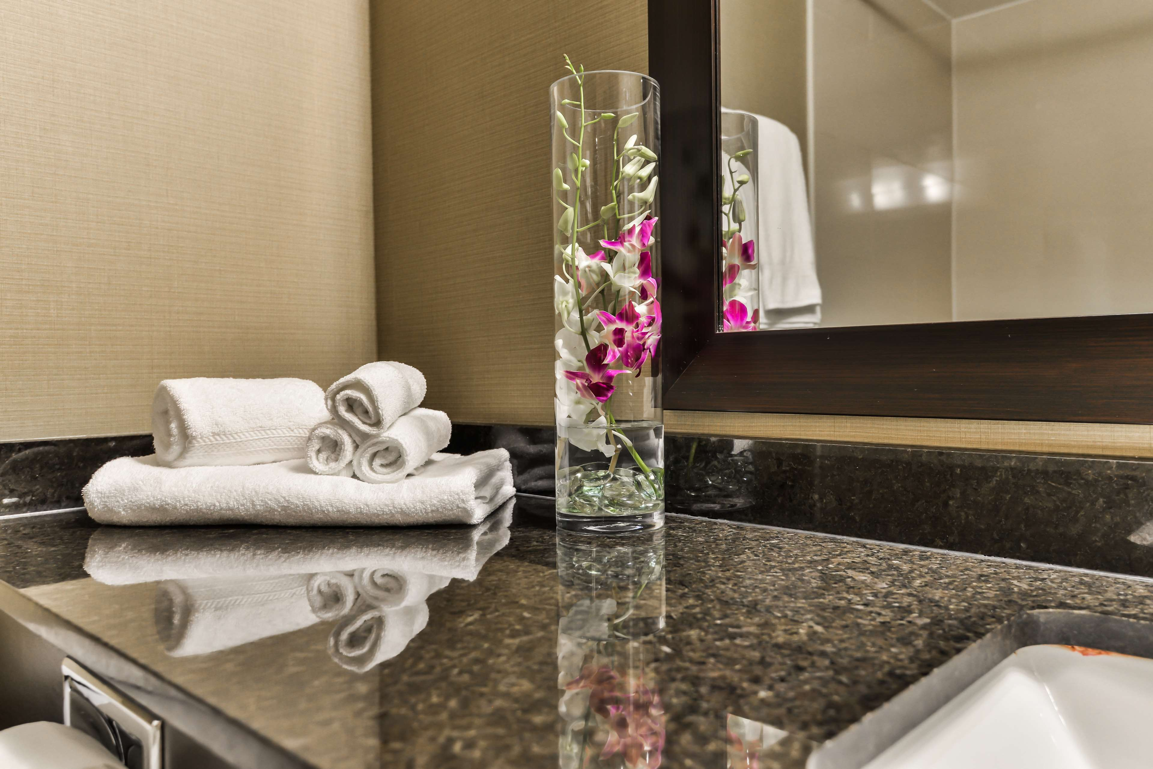 Guest Bathroom Best Western Plus Leamington Hotel & Conference Centre Leamington (519)326-8646