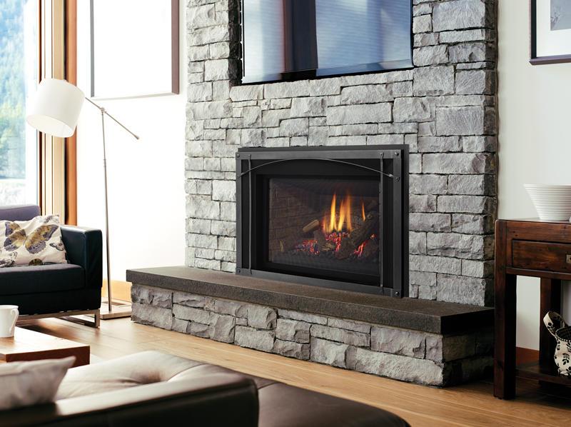 Fireplace Gallery in Edmonton: Regency Liberty Series Large Gas Fireplace Insert - LRI6