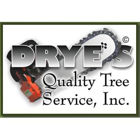 Drye's Tree & Stump
