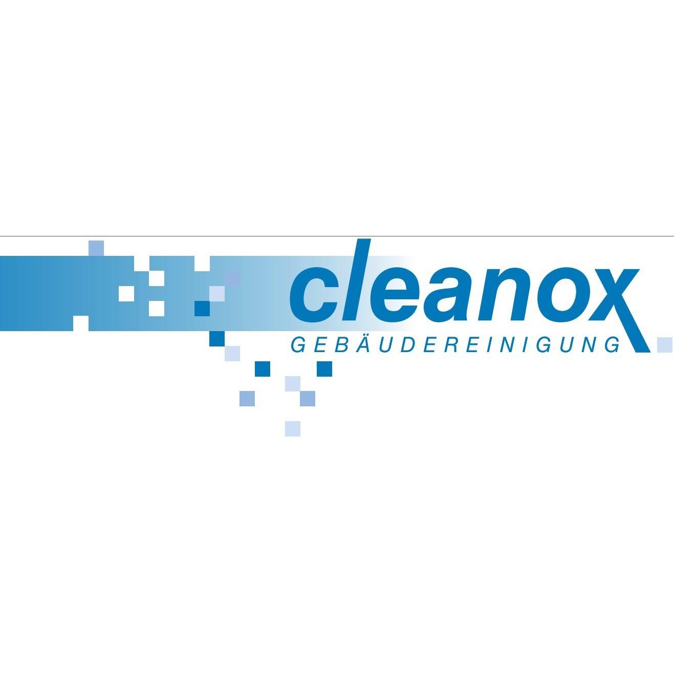 Bild zu cleanox GmbH & Co. KG in Pößneck