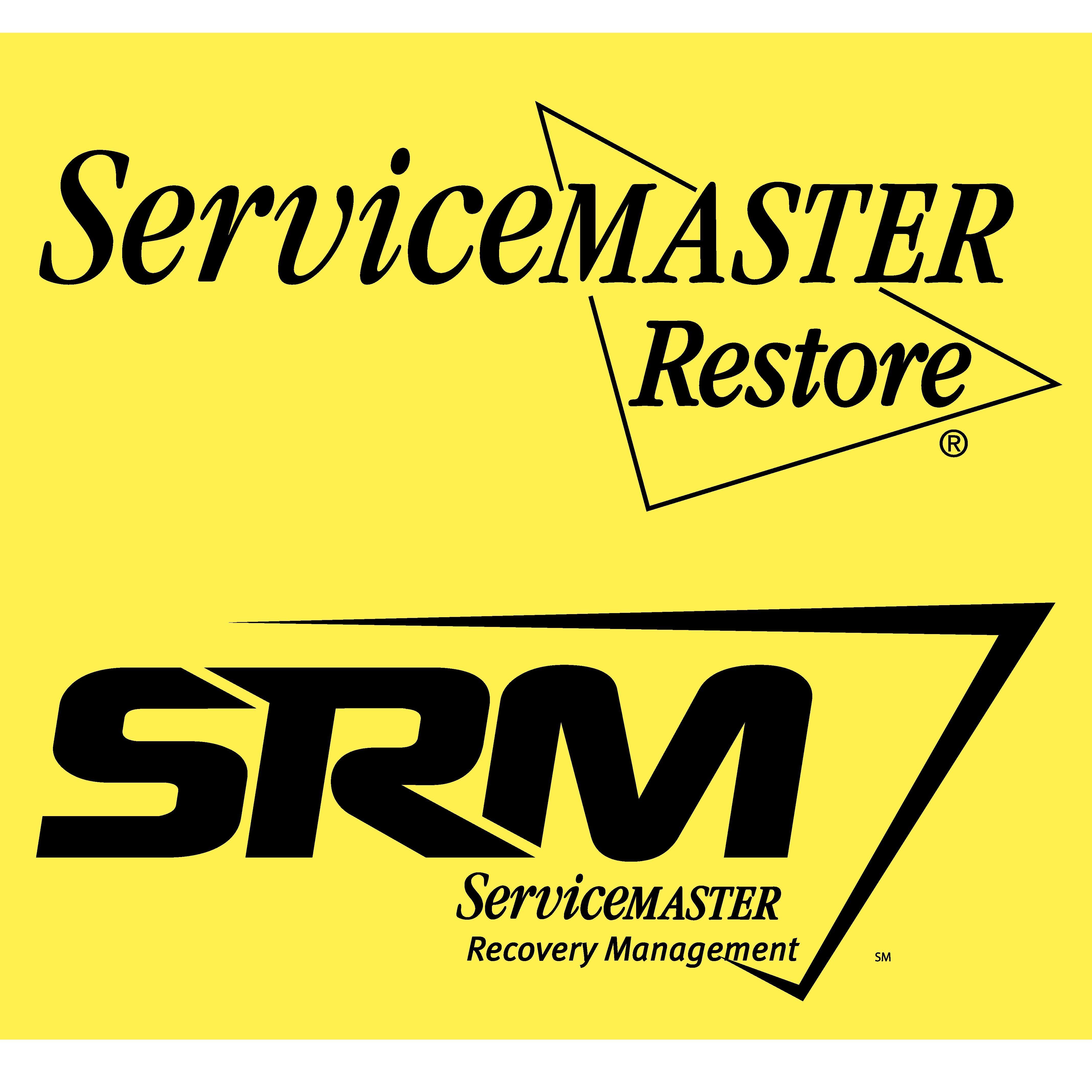 ServiceMaster DSI