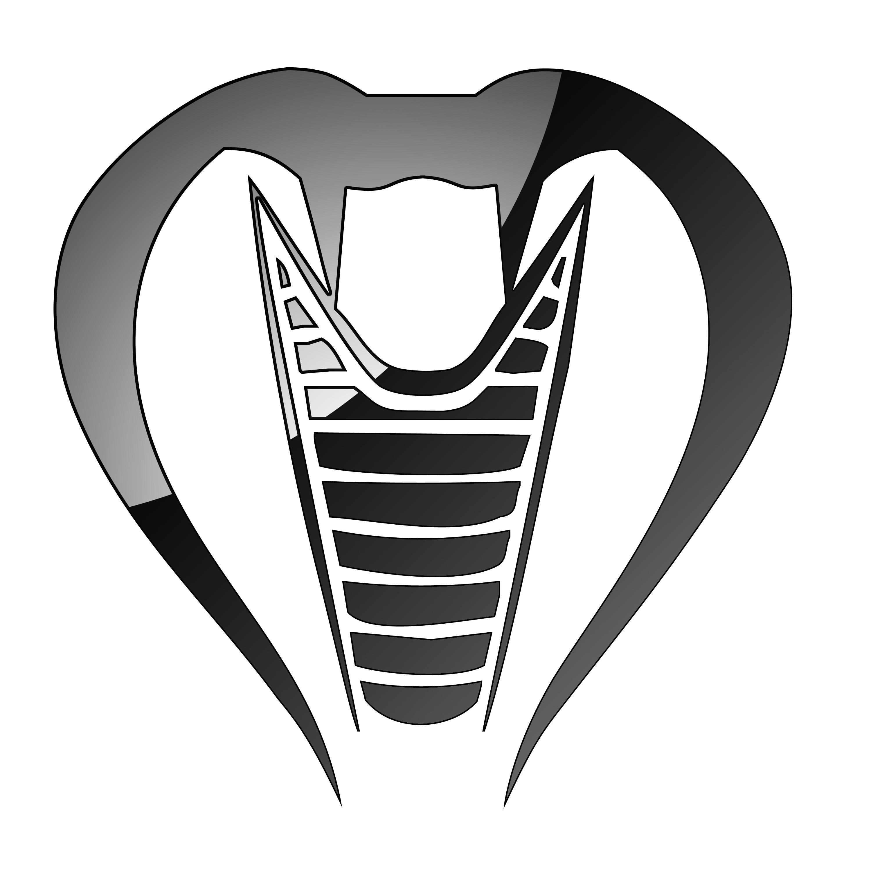 Cobra kites coupon code