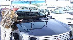 Auburn Auto Glass & Dent