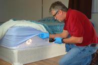 We are here to rid your home or business of pests such as bed bugs any any other sting pest.