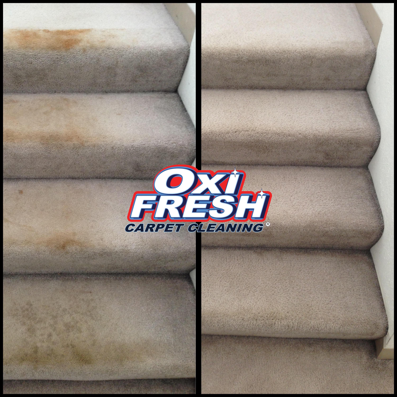 Oxi Fresh Carpet Cleaning Baton Rouge
