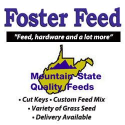 Foster Feed