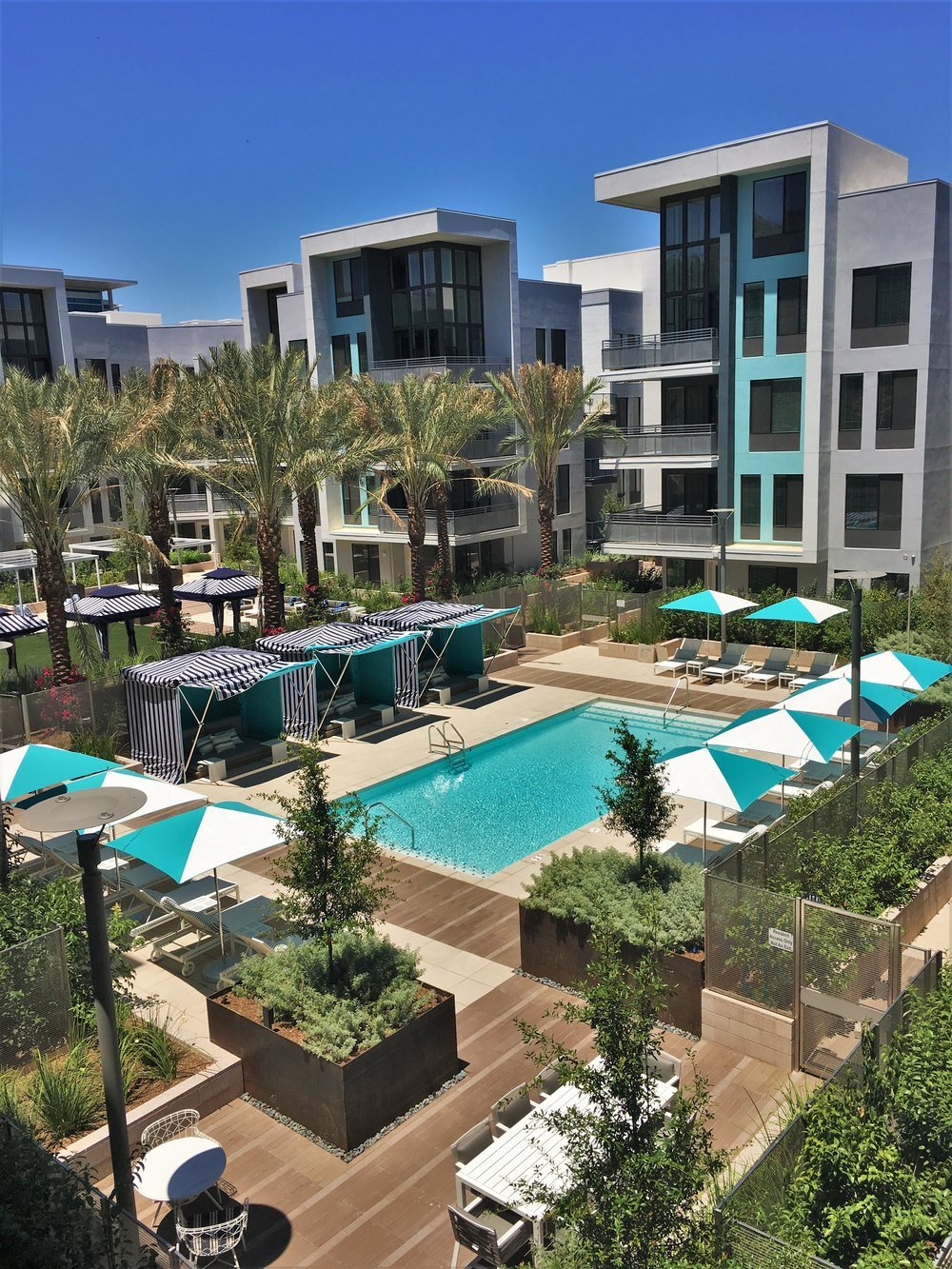 Two Swimming Pools and Spa SALT Tempe (833)871-8434