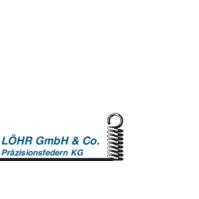 Bild zu Löhr GmbH & Co. Präzisionsfedern KG in Schwabach