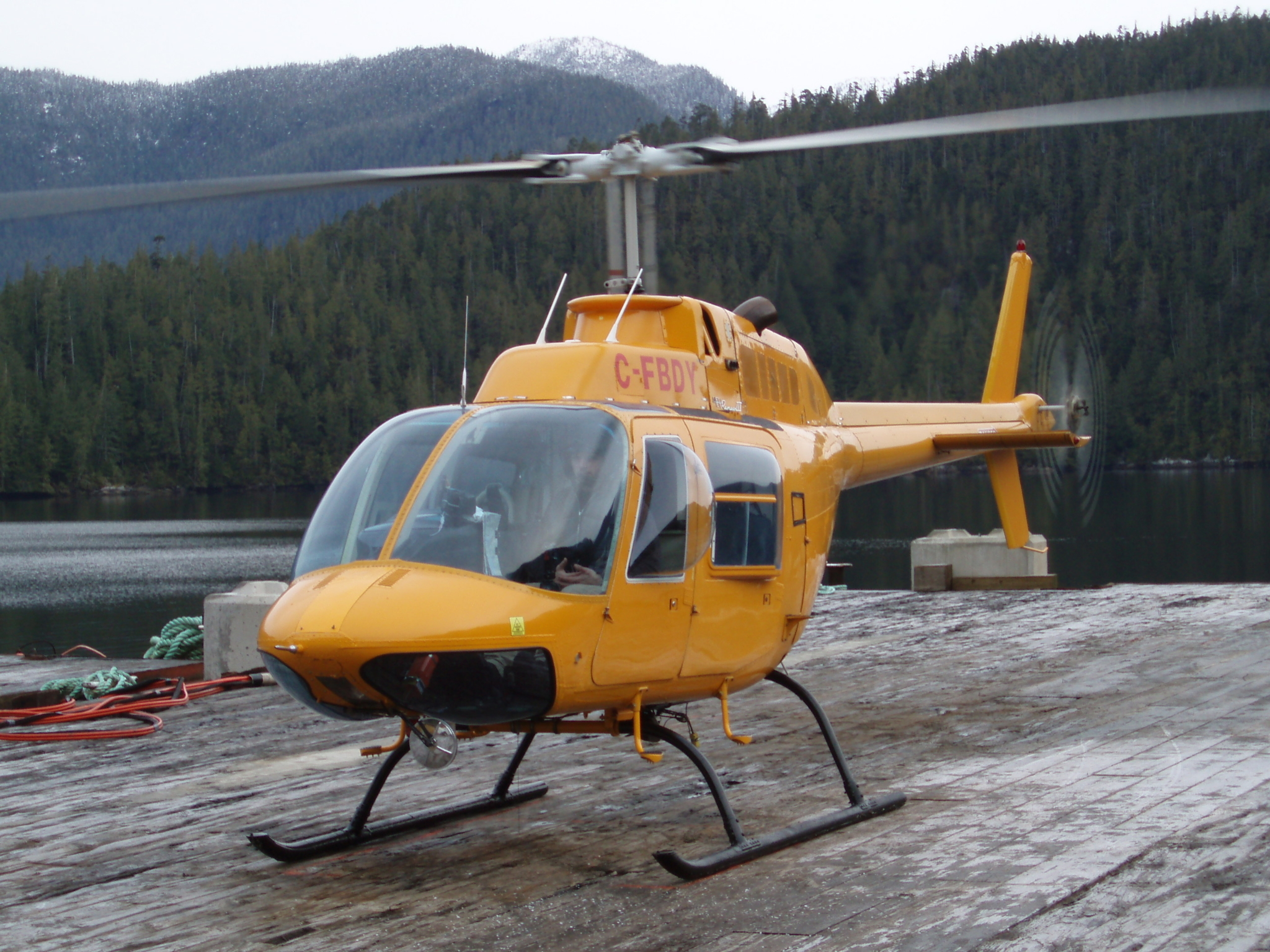 Pacific International Log Trading Inc in Delta: We have two Bell 206 helicopters to support our helicopter logging crews.