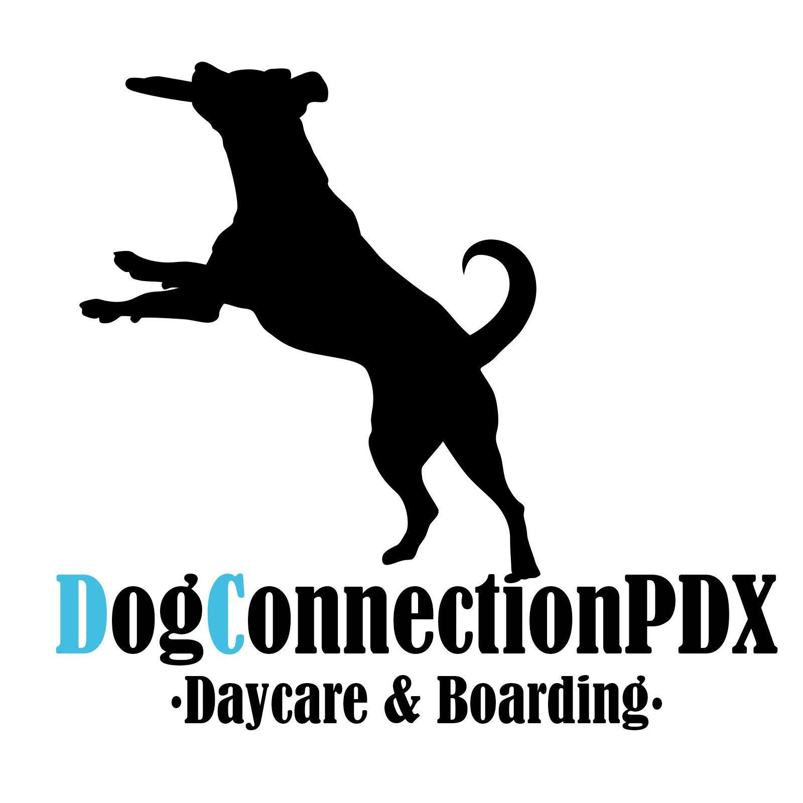 DogConnectionPDX Daycare & Boarding