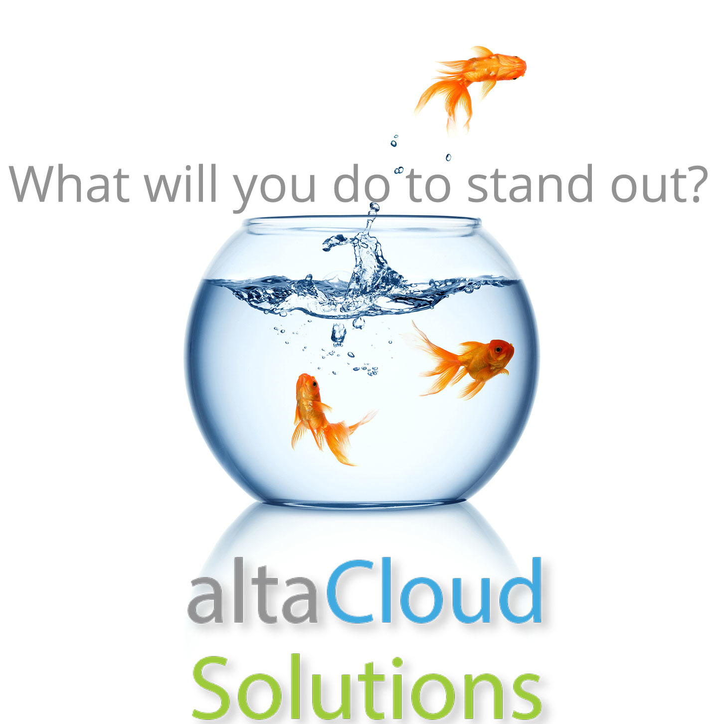 Altacloud solutions in cashiers nc 28717 for Internet 28717