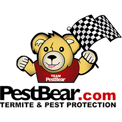 PestBear - Oldsmar, FL 34677 - (813)818-9898 | ShowMeLocal.com