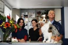 Arch Beach Veterinary Clinic
