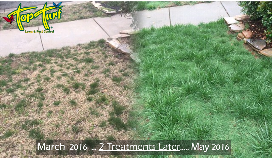 Top Turf Lawn Care And Pest Control 866 Grayson Highway Lawrenceville Ga Landscape Designers Mapquest