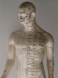 Acupunctuur H vd Have