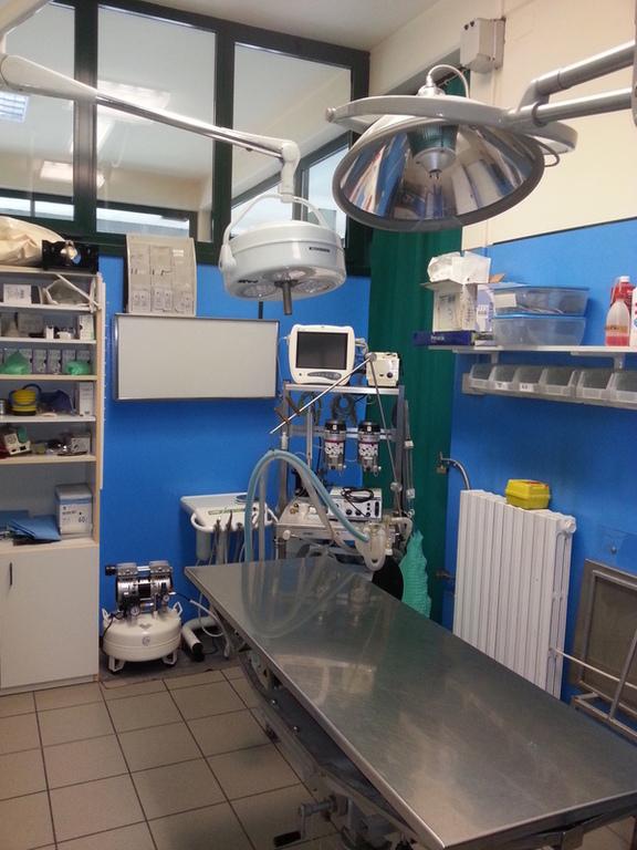 Ambulatorio Veterinario Dott. Gotter e Dott. Bortolami