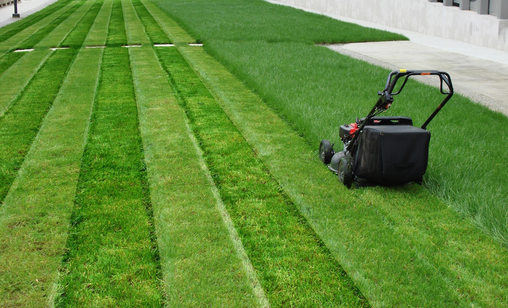 Brandons lawn care cleveland ohio for Lawn mowing and garden maintenance