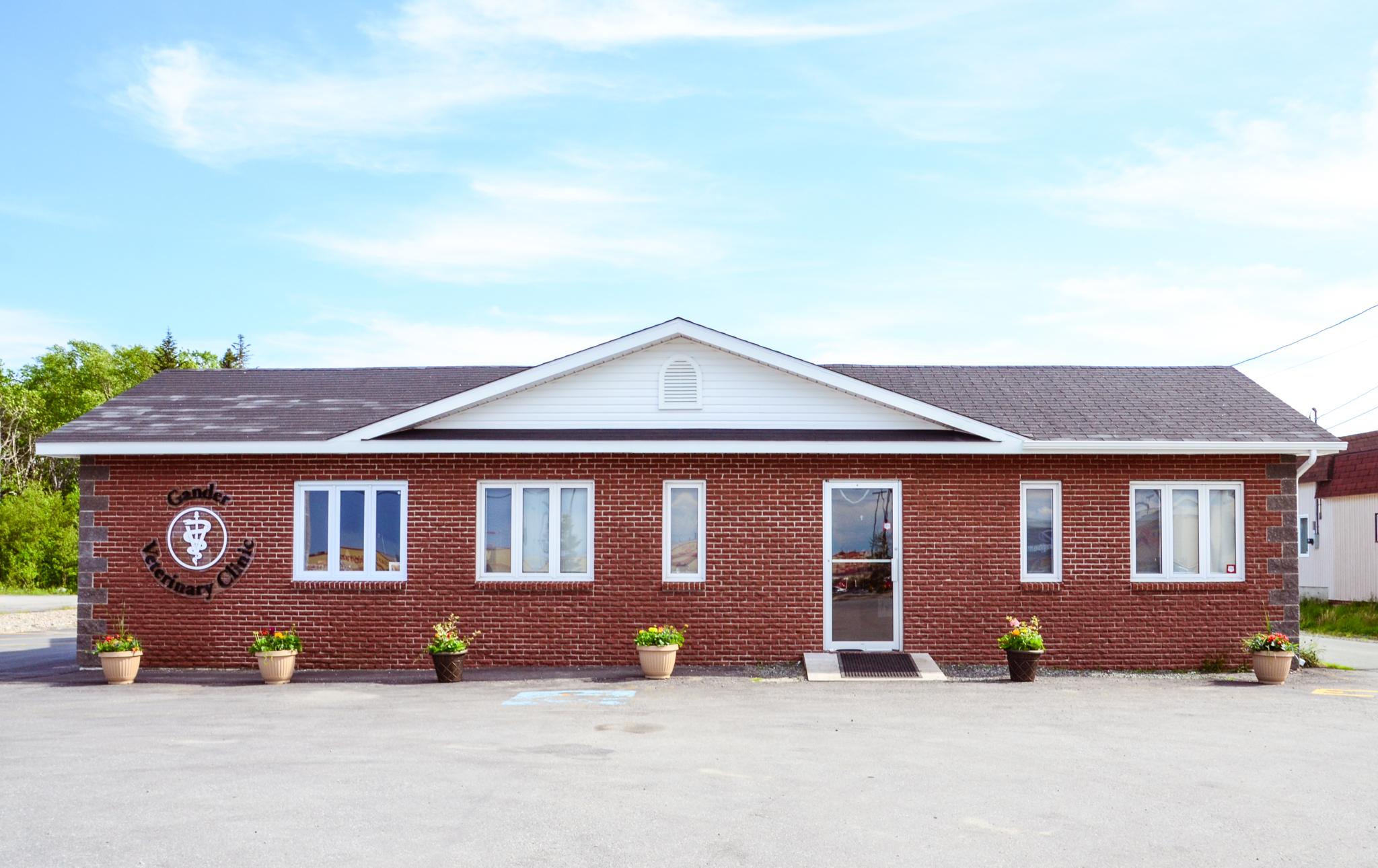 Gander Veterinary Clinic in Gander