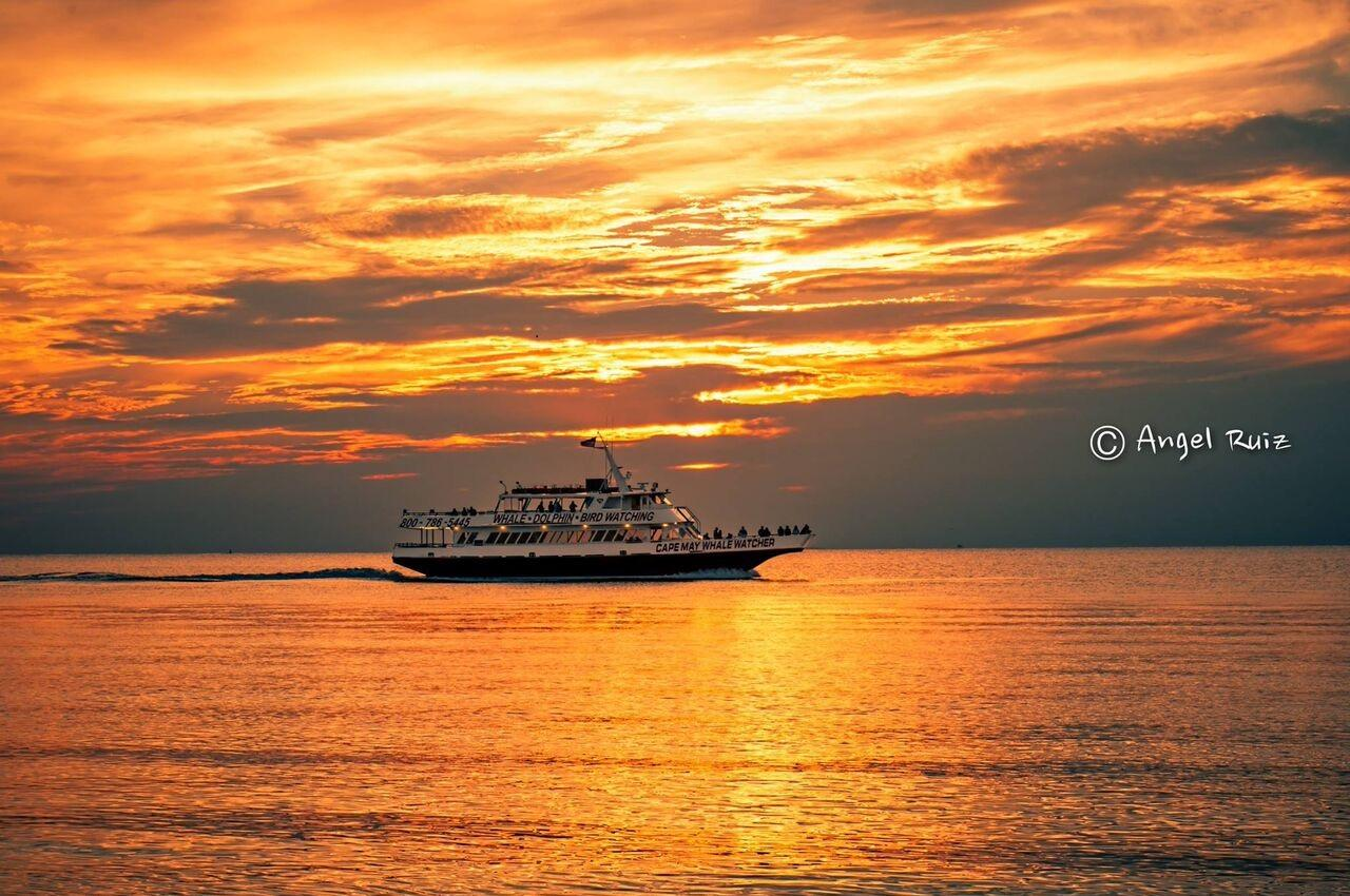 Nov 11, · reviews of Carnival Cruise Lines