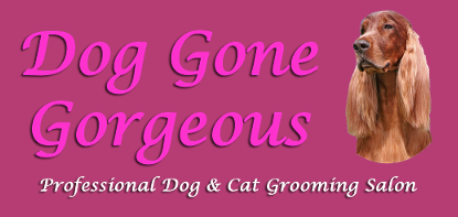 Dog Gone Gorgeous Grooming