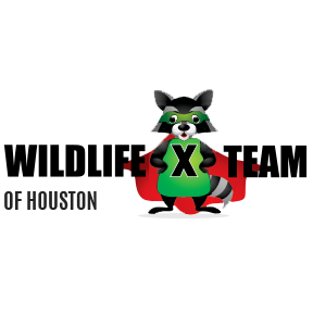The Wildlife X Team Houston - Sugar Land, TX - Pest & Animal Control