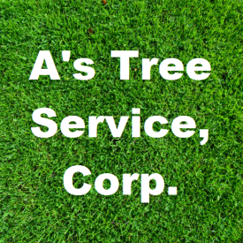 A's Tree Service, Corp.