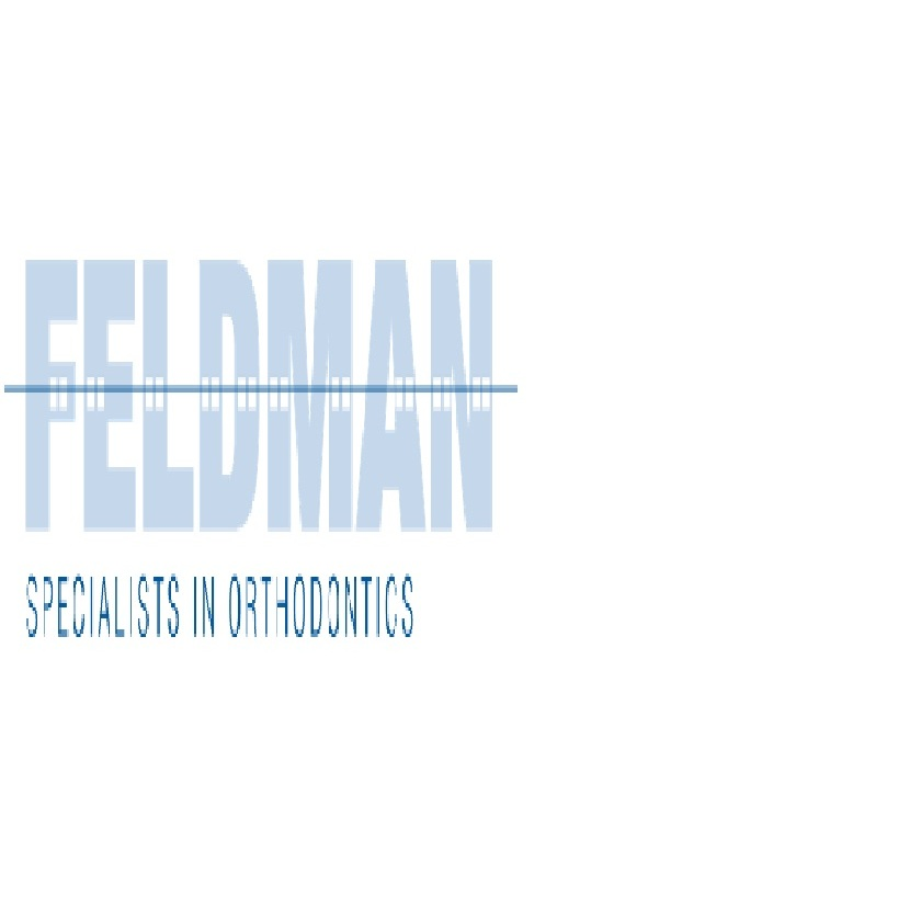 Seth D Feldman DDS