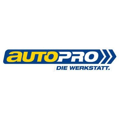 Logo von Auto-Riedel GmbH & Co. KG