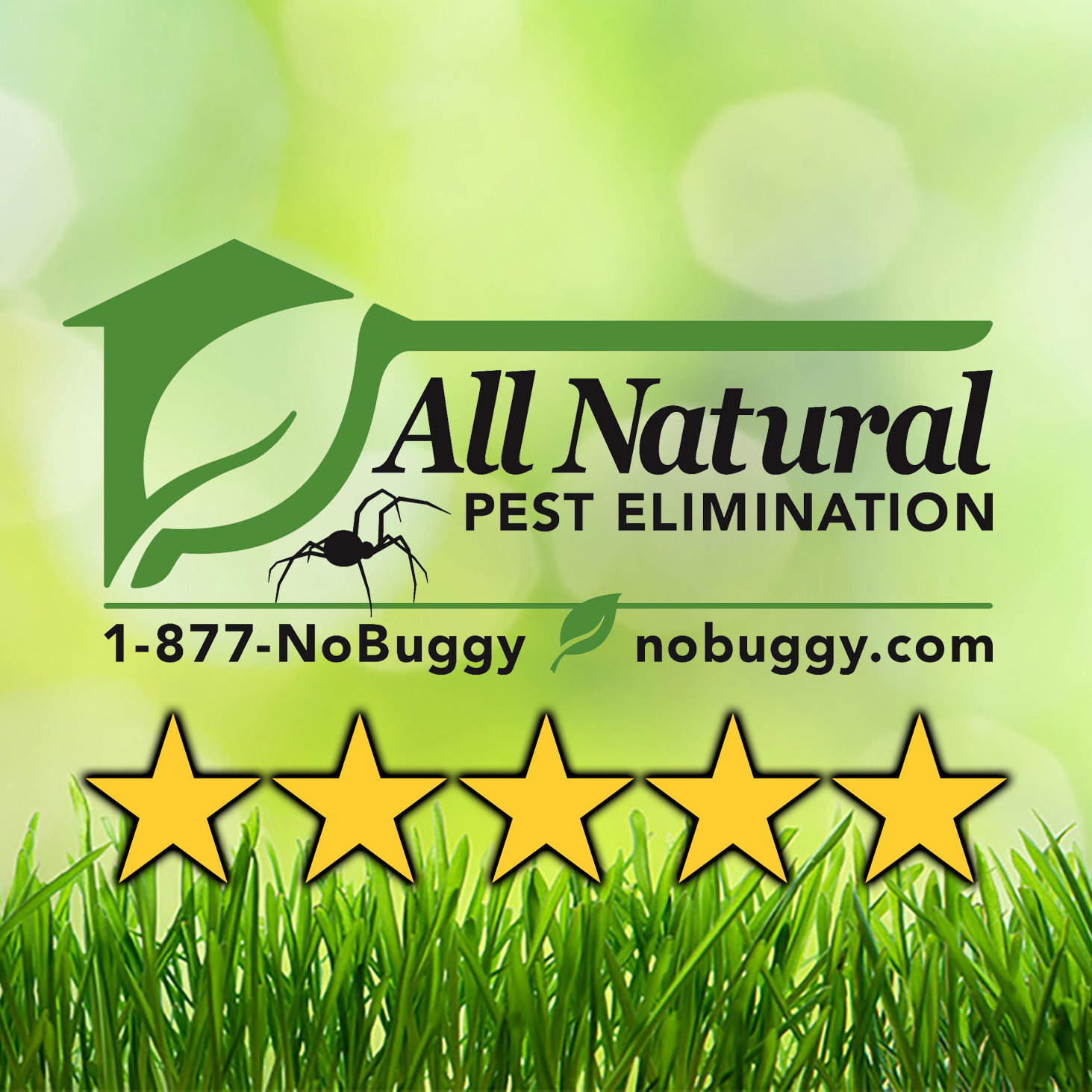 All Natural Pest Elimination Medford Oregon Or