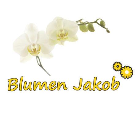Bild zu Blumen Jakob in Crimmitschau