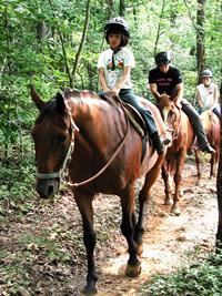 Sunburst Stables - Helen Horseback Riding & Zipline Tours - Clarkesville, GA